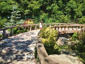 Ataturk arboretumu gol yolu